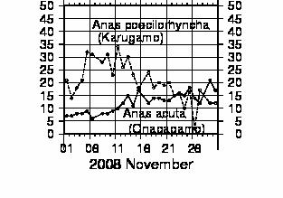 Bsp200811_onagagamo_s